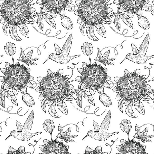 Hummingbird and Passiflora Seamless Pattern vector art illustration