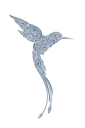 Hummingbird bird, monochrome. I