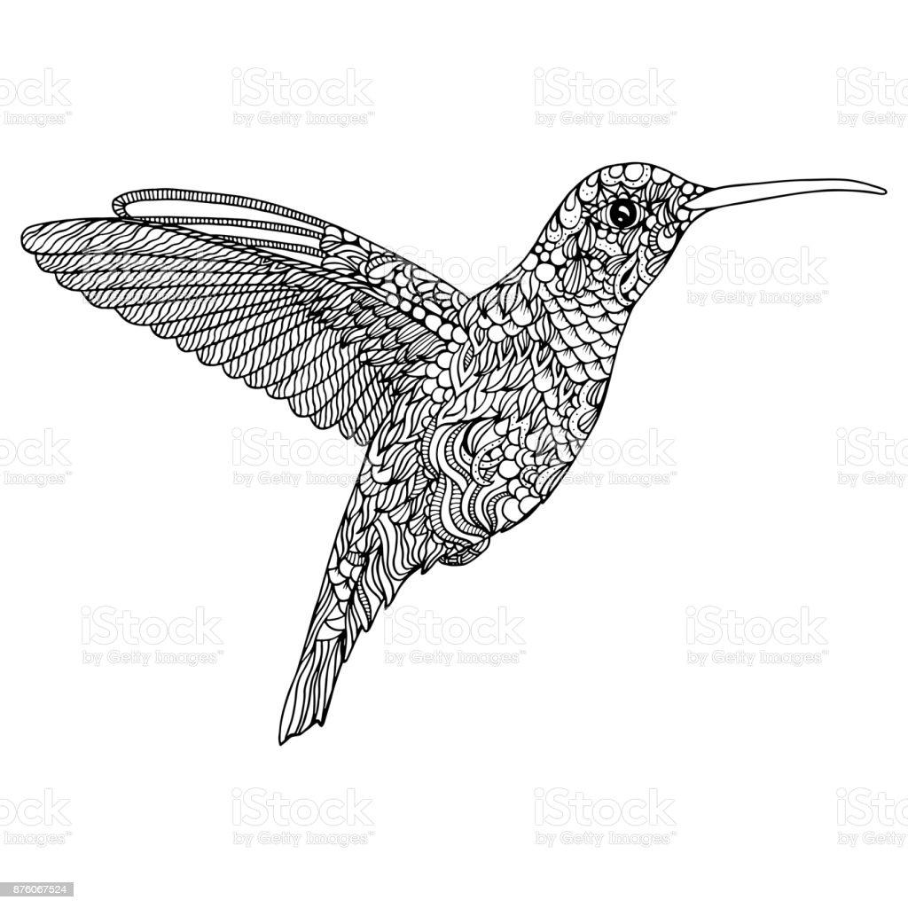 Sinek Kuşu Boyama Sayfası Stok Vektör Sanatı Beyaznin Daha Fazla