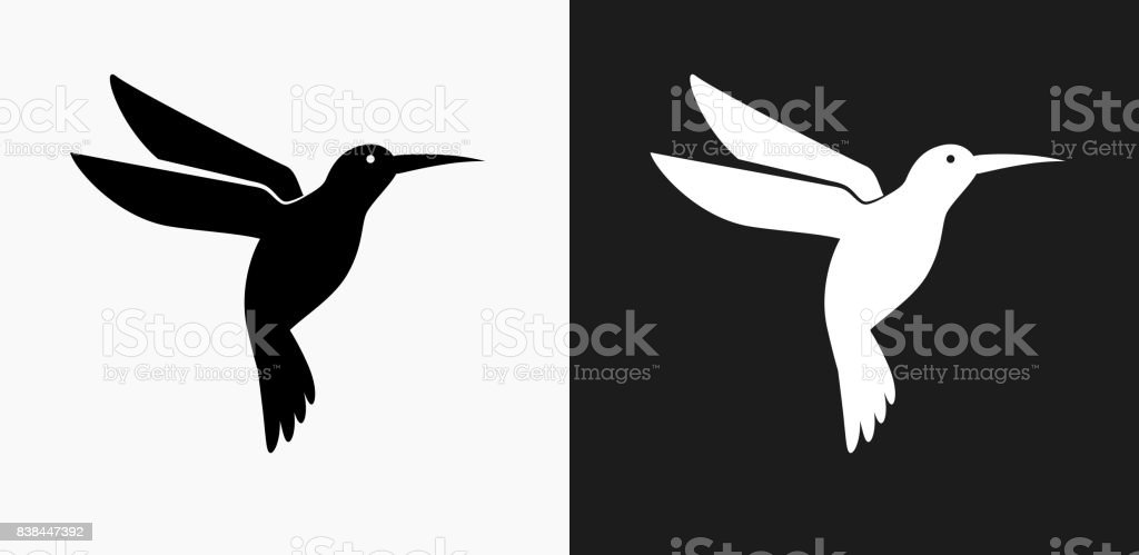 Hummingbird Icon on Black and White Vector Backgrounds vector art illustration