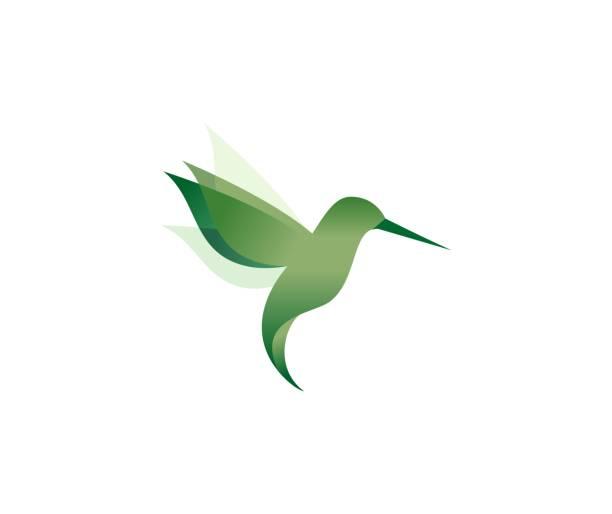 hummingbird icon - hummingbird stock illustrations