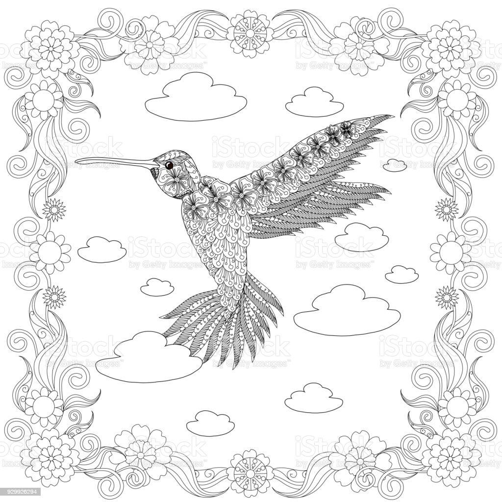 Kolibri Blume Rahmen Monochrome Skizze Färbung Seite Antistress ...