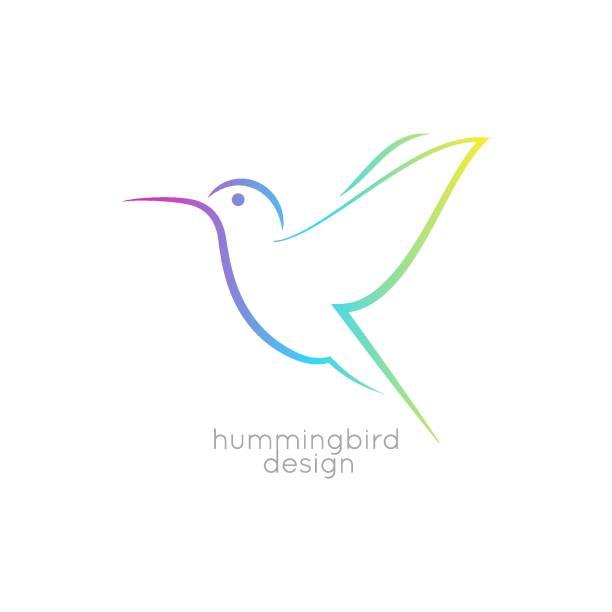 Hummingbird logo design. Colibri bird icon on white background Hummingbird logo design. Colibri bird icon on white background 8 eps hummingbird stock illustrations