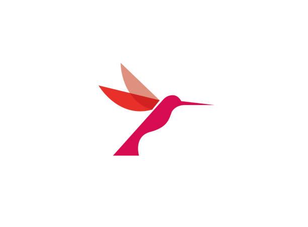 hummingbird red bird flying for logo - hummingbird stock illustrations