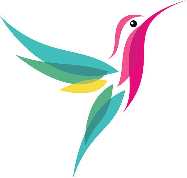 hummingbird - hummingbird stock illustrations