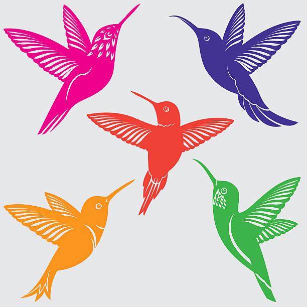 hummingbirds silhouettes set - hummingbird stock illustrations