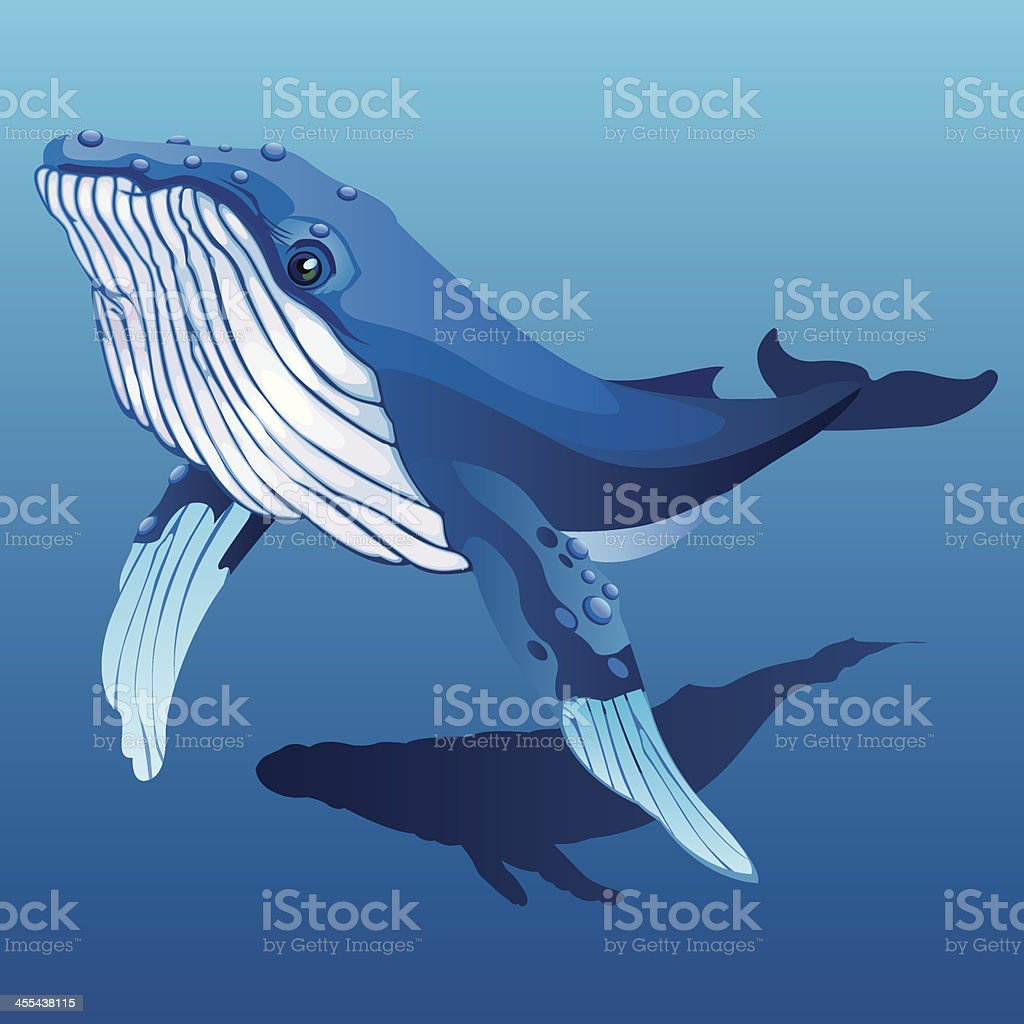 Humpback whale royalty-free stock vector art