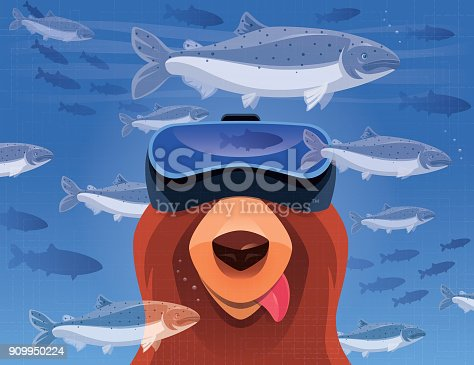 vector illustration of hungry bear watching salmons with VR goggles