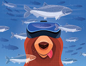 hungry bear watching salmons with VR goggles