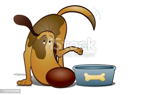 istock Hungry doggy 1204526380