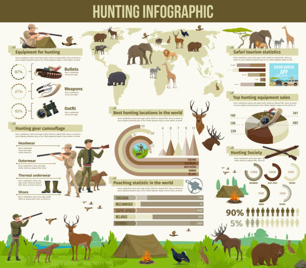 stockillustraties, clipart, cartoons en iconen met jacht dieren, hunter equipment infographic - roofdieren
