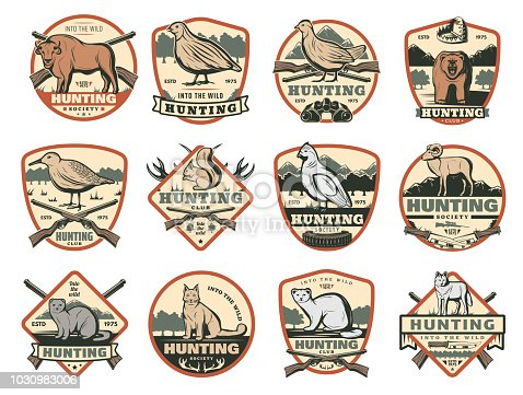 Hunter club or hunting society badges with wild animals and hunt ammo guns and traps. Vector African Safari buffalo, grouse or woodcock bird, wolf and fox or lynx and bear for open season adventure