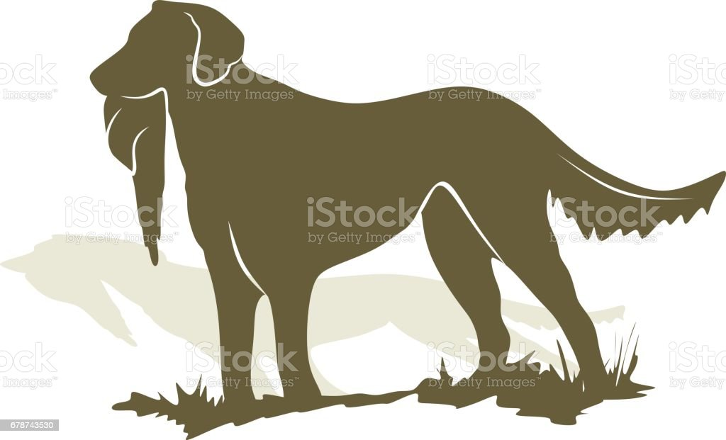 Hunting dog hunting dog – cliparts vectoriels et plus d'images de canard - oiseau aquatique libre de droits