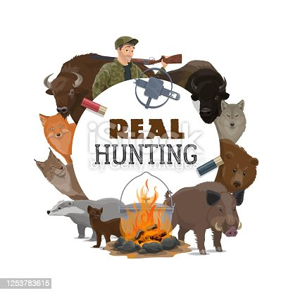 Hunt club opens season, vector poster with wild animals and hunting ammo equipment. Hunter with rifle gun, bullets and trap for bear, boar hog and badger, fox, wolf and lynx, buffalo and ermine