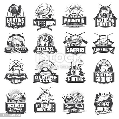 Hunting sport animal trophy, hunter ammo or hunt equipment. Vector hunting club badges African safari cheetah, buffalo,wolf or badger, bear or ermine and woodcock, goose or fox, partridge and sheep