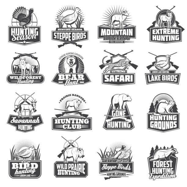 Hunting sport ammo, hunter animals trophy icons Hunting sport animal trophy, hunter ammo or hunt equipment. Vector hunting club badges African safari cheetah, buffalo,wolf or badger, bear or ermine and woodcock, goose or fox, partridge and sheep ermine stock illustrations