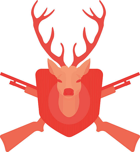 Hunting trophy. Deer head with 2 crossed shotguns. No outline Hunting trophy. Stuffed taxidermy deer head with big antlers in wood shield. 2 crossed shotguns. Color no outline illustration isolated on white stuffed stock illustrations