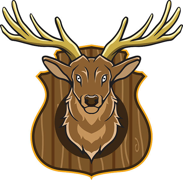 Hunting Trophy Vector illustration of hunting trophy stuffed stock illustrations