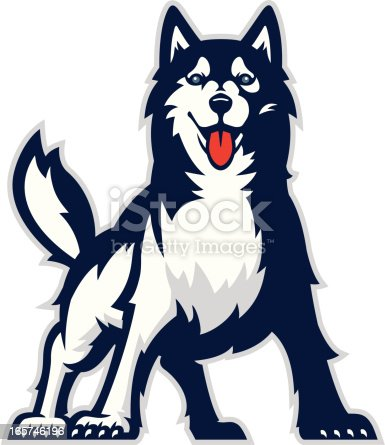 Stylized powerful huskie mascot. All colors are separated in layers. Easy to edit. Black and white version (EPS8,JPEG) included.
