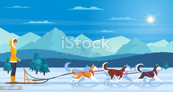 Dog Sled Stock Illustrations – 931 Dog Sled Stock Illustrations, Vectors &  Clipart - Dreamstime