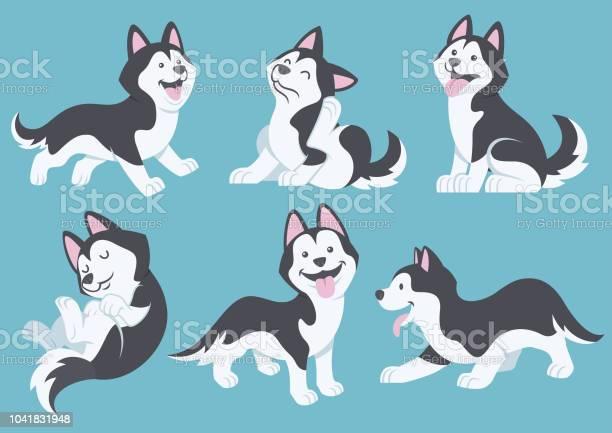 Husky dog cartoon set vector id1041831948?b=1&k=6&m=1041831948&s=612x612&h=aaqq j4ziuujkgis9q0arqjgm9oxnvwpp30nka11 is=
