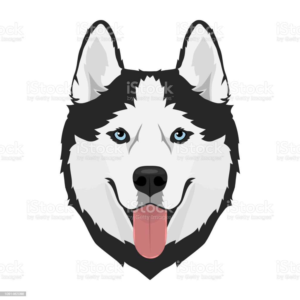 Husky dog head vector art illustration