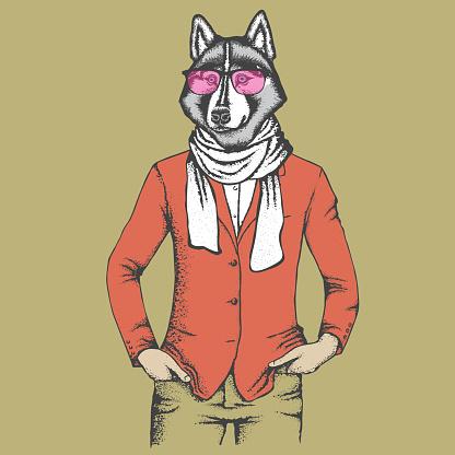 Husky in human suit