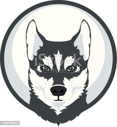Head of dog (husky)