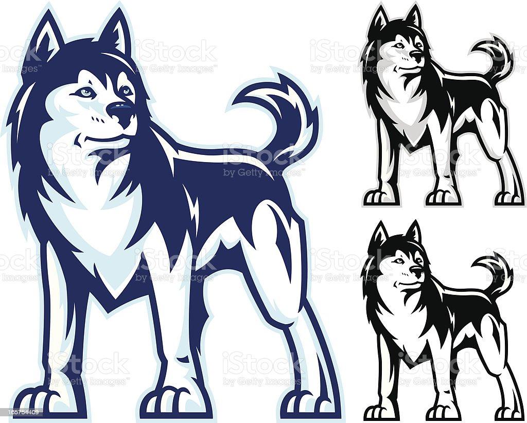 Husky Power vector art illustration