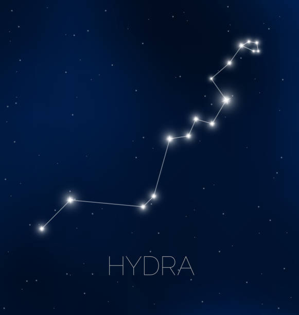 Hydra constellation in night sky Hydra constellation in night sky rymdraket stock illustrations