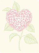 Vector design elements. Engravings Technology. Hydrangea in the form of heart.