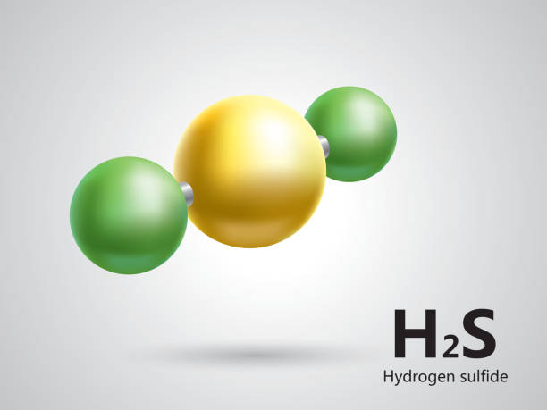 stockillustraties, clipart, cartoons en iconen met hydrogen sulfide molecular model - waterstof