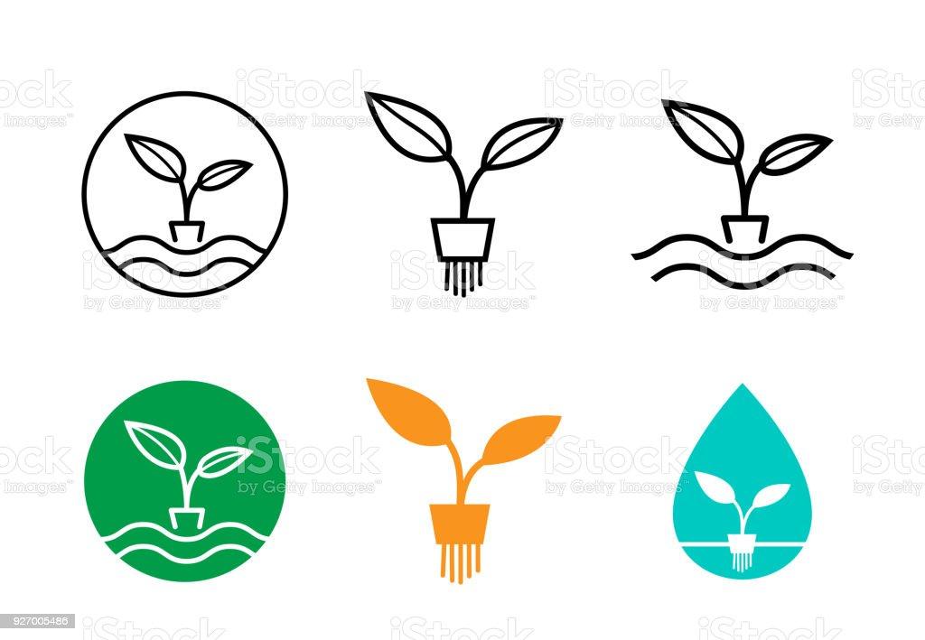 水耕栽培植物のロゴとシンボルベ...