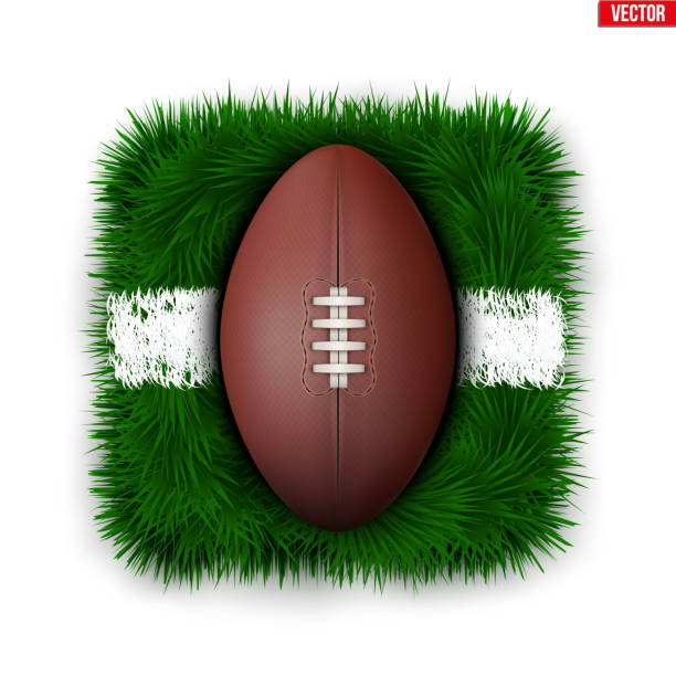 Icon Australian rules football field ball on grass vector art illustration