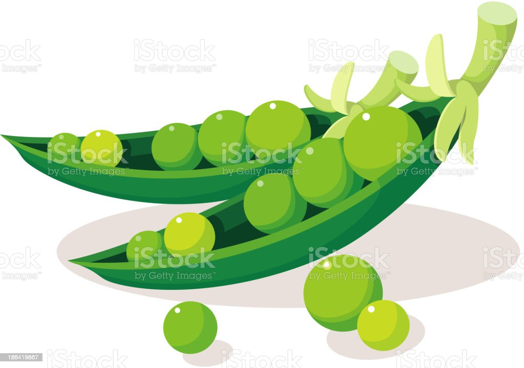 royalty free clip art of soybean clip art vector images rh istockphoto com soybean clip art black and white soybean clipart black
