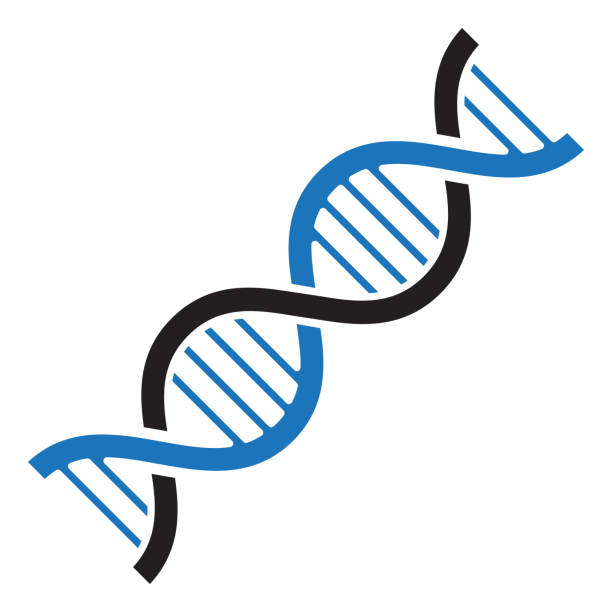 stockillustraties, clipart, cartoons en iconen met dna-pictogram. zwarte en blauwe kleuren. vectorillustratie - dna