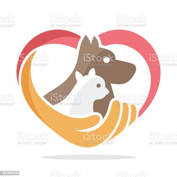Icon illustration with the concept of pet care vector id951698046?b=1&k=6&m=951698046&s=612x612&h=hmqlr37tidtr2z7e0ibvtez6vx2pctcmemcwldy0hmi=