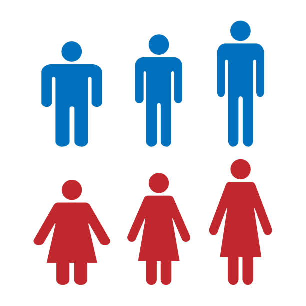 illustrazioni stock, clip art, cartoni animati e icone di tendenza di icon is different shape and weight of men and women. healthy weight, obese and tall people. simple flat vector icons - bassino