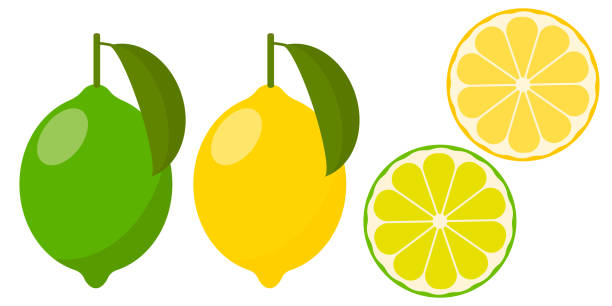 Icon lemon and lime, vector. icon set lemon and lime, vector illustration on white background. whole fruit and cut into pieces. citrus. lime stock illustrations