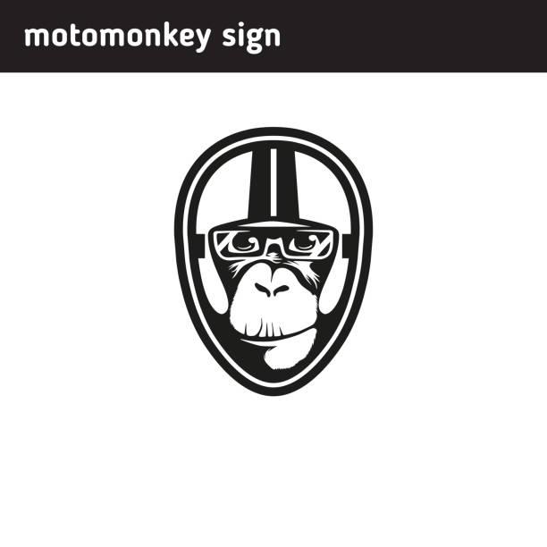 symbol-affen, die das tragen eines helmes - extravagant schutzbrille stock-grafiken, -clipart, -cartoons und -symbole