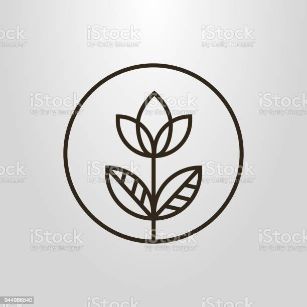 Icon of an linear simple flower in a round frame vector id944986540?b=1&k=6&m=944986540&s=612x612&h=t1orqbb82vn3euqmg4u6m8dsnqwaqutck6frrv8mfte=