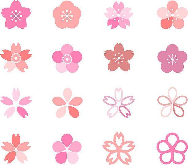 Icon of cherry blossom Icon of cherry blossom peach blossom stock illustrations
