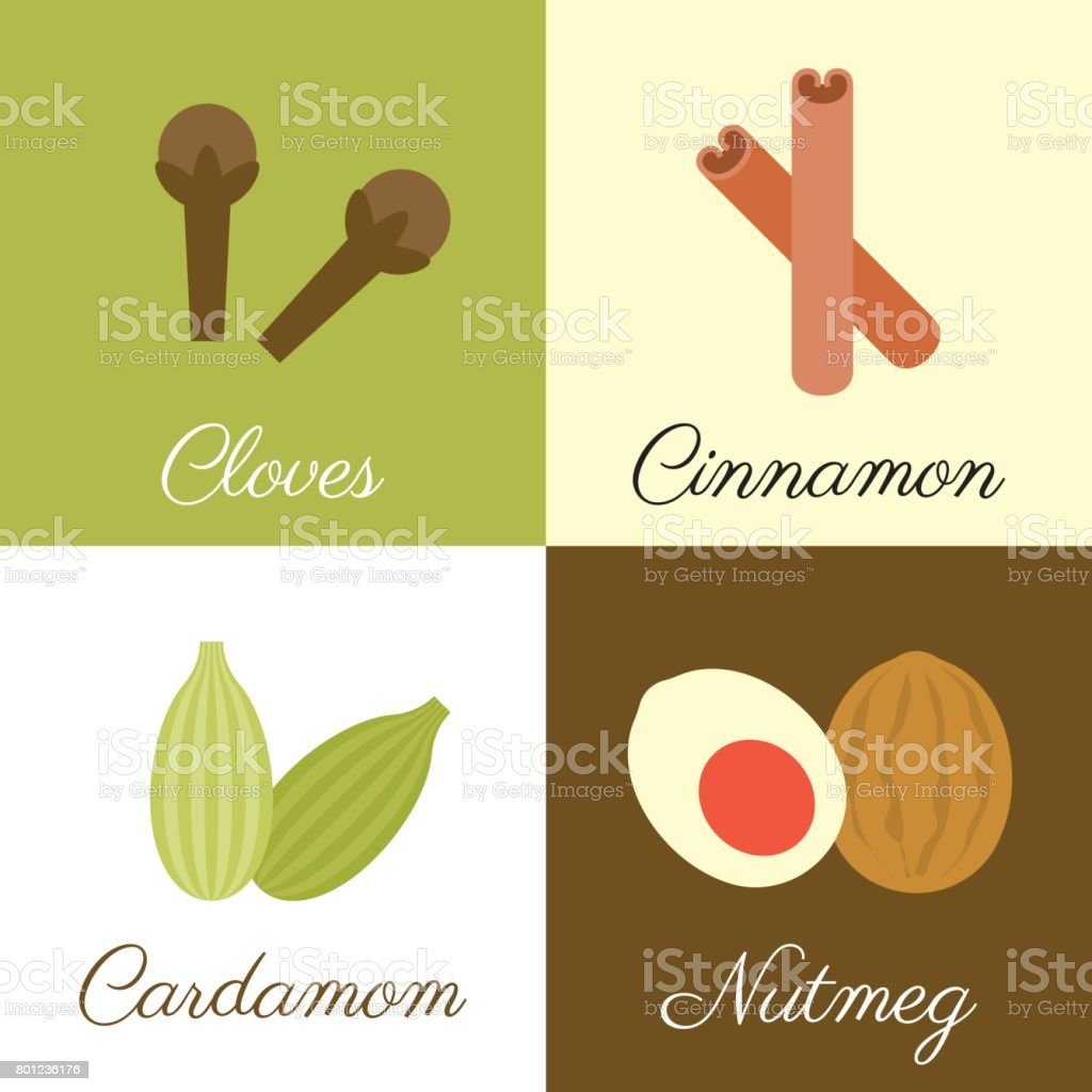 Icon of herbs and spices vector art illustration