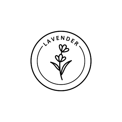 Icon of Lavender in trendy linear style. Vector herbal organic lavender badges of packaging design template and emblem.