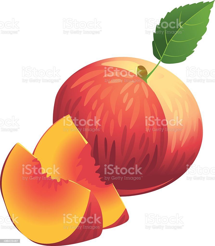 Icon of Ripe summer peach with slices and green leaf vector art illustration