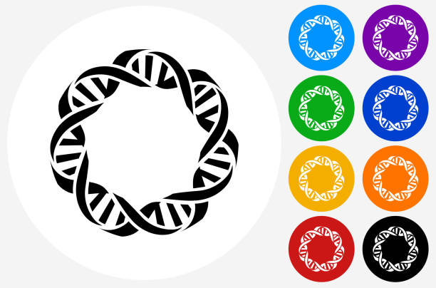 dna icon on flat color circle buttons - dna stock illustrations, clip art, cartoons, & icons