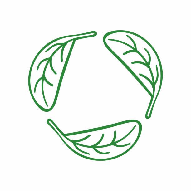 ilustrações de stock, clip art, desenhos animados e ícones de icon recycling from the leaves. eco symbol, logo, emblem drawn by hand. sketch. - alter do chão
