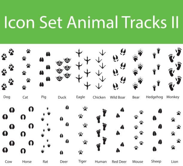 icon set tierspuren ii - igel stock-grafiken, -clipart, -cartoons und -symbole