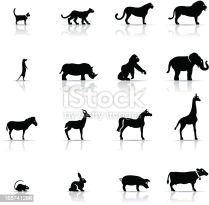 Icon Set, Animals on white background, made in adobe Illustrator (vector)