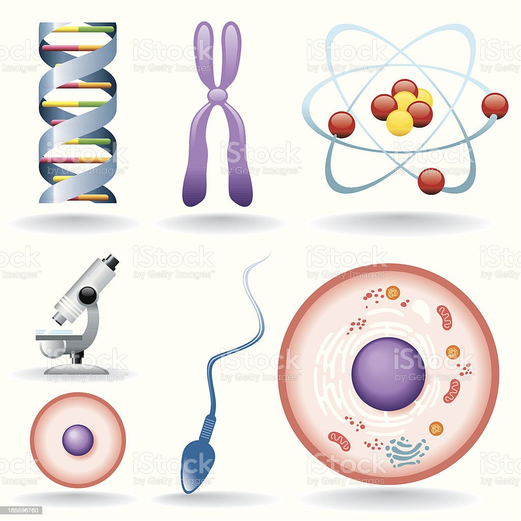 Icon Set, biology vector art illustration